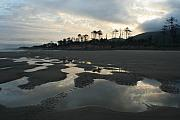 Puddle Posters - Tidepools at dawn Poster by Idaho Scenic Images Linda Lantzy