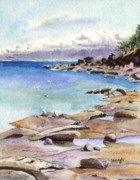 Seagull Drawings Originals - Tides Out at Tribune Bay on Hornby Island by Wendy Mould