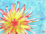 Loose Watercolor Prints - Tie-Dye Dahlia Print by Ken Powers