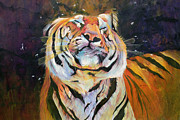 Tiger Paintings - Tiger - Shaking Head  by Odile Kidd