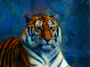 Jan Bonner - Tiger Blue
