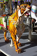 Riding Photos - Tiger carousel ride by Garry Gay