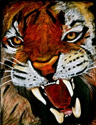 Chalk Drawing Metal Prints - Tiger Metal Print by Chloe Malmquist