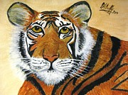 Aniimal Framed Prints - Tiger Framed Print by Deborah Duffy