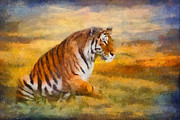 Wild Animal Digital Art Framed Prints - Tiger Dreams Framed Print by Aimelle