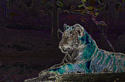 Tiger Dream Prints - Tiger Dreamscape Print by Bobby Murphy