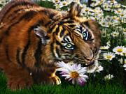 Tiger Cub Posters - Tiger Flowers Poster by Julie L Hoddinott