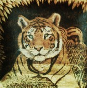 Tiger Pyrography Posters - Tiger  Poster by Freddy  Smith