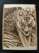 Tiger Pyrography Originals - Tiger by Guy Jackson