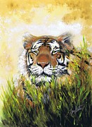 The Tiger Paintings - Tiger in Grass by Jerry Bates