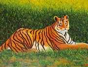 Lore Rossi Metal Prints - Tiger Metal Print by Lore Rossi