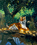 Tiger Illustration Framed Prints - Tiger Framed Print by MGL Studio - Chris Hiett