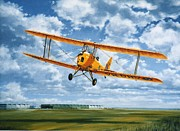 Raf Painting Framed Prints - Tiger Moth - Wind beneath my Wings Framed Print by Colin Parker