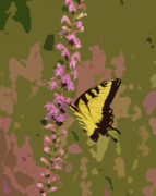 Tiger Swallowtail Digital Art Posters - Tiger on Blazing Star Poster by Peg Urban
