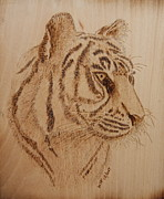 Wood Burning Pyrography Prints - Tiger on wood Print by Bill Fugerer