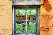 Cabin Window Digital Art Framed Prints - Tiger Outside My Window Framed Print by Anthony Caruso