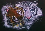 Cuddles Posters - Tiger Snuggles Poster by Michelle Spragg
