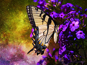 Layered Digital Art Prints - Tiger Swallowtail Feeding In Outer Space Print by J Larry Walker