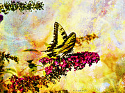 Butterfly Digital Art Posters - Tiger Swallowtail Feeding Poster by J Larry Walker