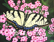 Phlox Painting Framed Prints - Tiger Swallowtail Framed Print by Gail Darnell