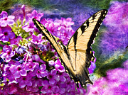 Tiger Swallowtail Digital Art Prints - Tiger Swallowtail Morning Feed Print by J Larry Walker