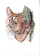 Studio Drawings Framed Prints - Tiger Framed Print by Therese A Kraemer