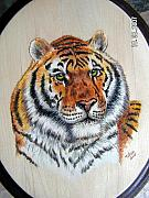 Pet Portraits Pyrography - Tiger tiger by John Tatham