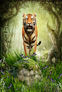 Tiger Digital Art Framed Prints - Tiger Woods Framed Print by Julie L Hoddinott