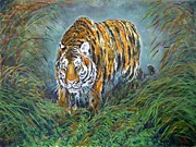 Watercolor Tiger Framed Prints - Tiger Framed Print by Zaira Dzhaubaeva