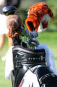 Tiger Woods Photos - Tigers Tiger by Chuck Kuhn