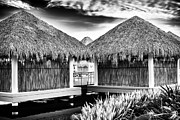 Rock Shelter Metal Prints - Tiki Huts in Punta Metal Print by John Rizzuto