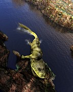 Origins Of Life Prints - Tiktaalik Prehistoric Fish, Artwork Print by Victor Habbick Visions