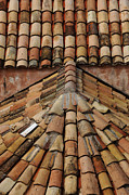 Tile Roof Framed Prints - Tile Roof In Croatia Framed Print by Bob Christopher
