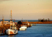 Marina Digital Art - Tilghman Island Maryland by Bill Cannon