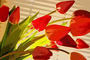 Tilted Posters - Tilted Tulips Poster by Julie Lueders 