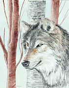 Timber Paintings - Timber Wolf by Morgan Fitzsimons