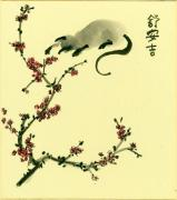 Plum Blossoms Prints - Time to Play Print by Angi Shearstone