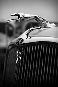 Greyhound Digital Art Posters - Timmis-Ford V8 Greyhound Hood Ornament Poster by Gordon Dean II