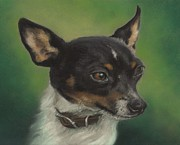 Terriers Pastels - Tiny Toy Foxy by Pamela Humbargar