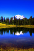 Tipsoo Framed Prints - Tipsoo Lake and Mt Rainier Framed Print by David Patterson