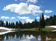 Refelctions Photos - Tipsoo Lake Reflection by Charles Robinson