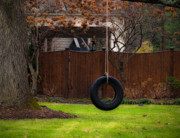 Tire Framed Prints - Tire Swing Framed Print by Valerie Morrison