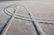 Dry Lake Photos - Tire Tracks in the Dirt by Thom Gourley/Flatbread Images, LLC