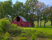 Tennessee Barn Originals - TN Barn by Sue Karski
