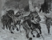 Huskies Drawings Prints - To the Finish Print by Diana Kaye Obe
