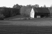 Farming Barns Prints - Tobacco Barn in black and white Print by JD Grimes