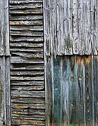 Shed Metal Prints - Tobacco Shed in France Metal Print by Marion McCristall