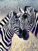Zebras Framed Prints - Together Framed Print by Arline Wagner