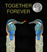 Kingfisher Mixed Media - Together Forever Kingfisher by Eric Kempson