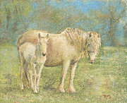 Richard Pastels - TOGETHER New Forest Pony and Foal by Richard James Digance